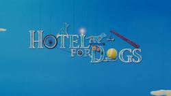 Hotelfordogs