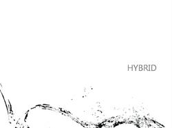 HYBRID niki