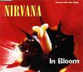 Thumbnail for version as of 20:21, May 12, 2013