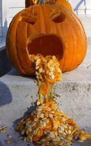 Pumpkin-toss.jpg large