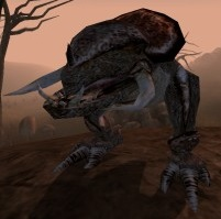 Kagouti Morrowind