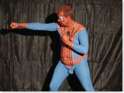 Spiderman cosplay stupido.jpg