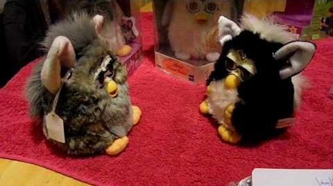 Furbish (Furby Fake) interacts with Japanese-speaking Adult Furby