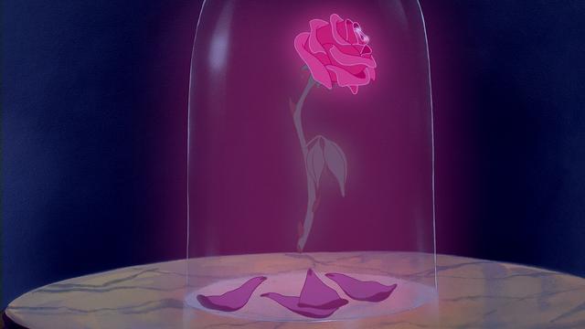 Fichier la belle et la b te disney rose enchant e cloche de verre p wiki once upon - Rose sous cloche la belle et la bete ...