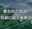 Episode 500
