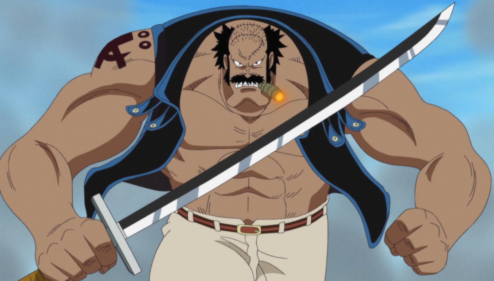 Fossa | One Piece Wiki | Fandom powered by Wikia