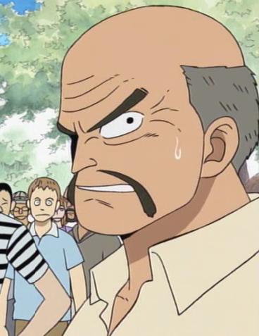 Berkas:Poro Anime Pre Timeskip Infobox.png