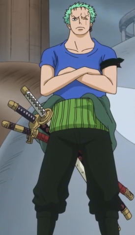 File:Zoro's Zou Outfit.png