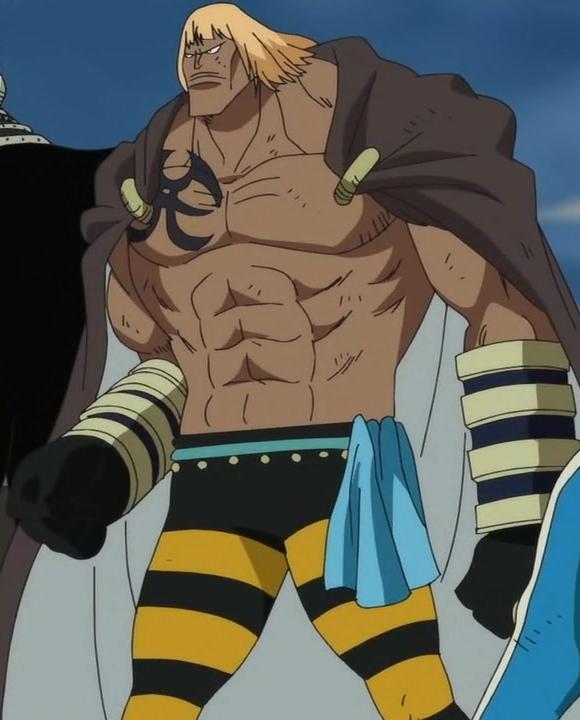 One Piece Encyclopedia