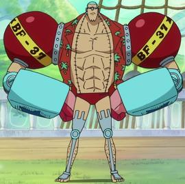 Фрэнки после таймскипа в аниме