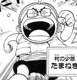 Tamanegi Manga Pre Timeskip Infobox