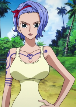 Nojiko Anime Pre Timeskip Infobox