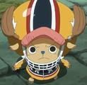Chopper's First Zou Outfit.png