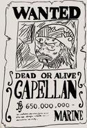 CapellanPoster
