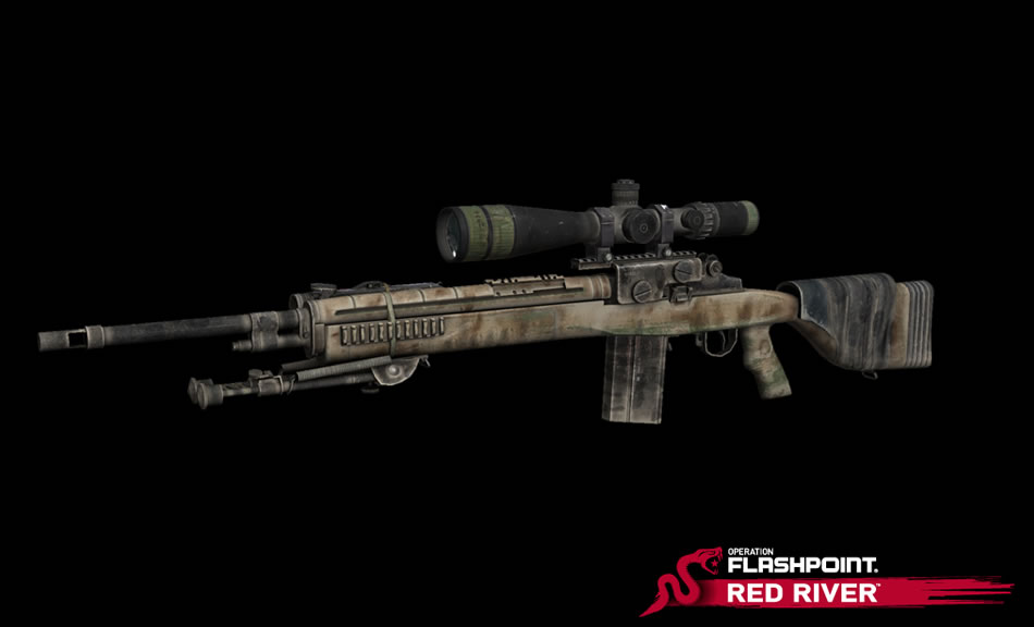 The M14 DMR with a Sniper  M14 Dmr Stock