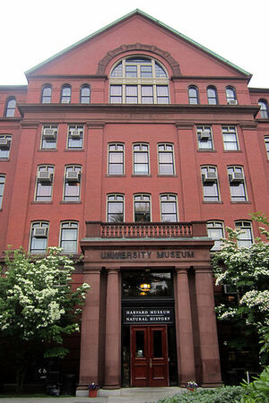 MCZ Harvard Un
