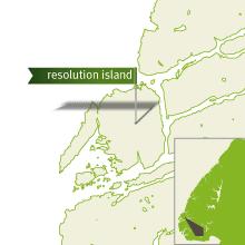 ResolutionIsland