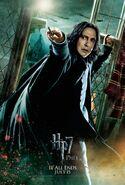 HarryPotterDH2 040