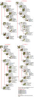 Rattus mutations chart by naonical-d7kccuh