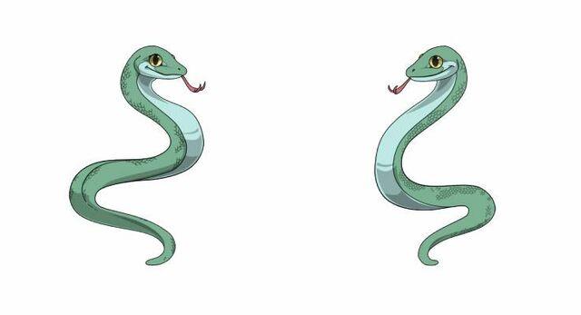 File:Serpentes.jpg