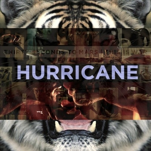 Hurricane (30 Seconds to Mars song) | Own Eurovision Song ...