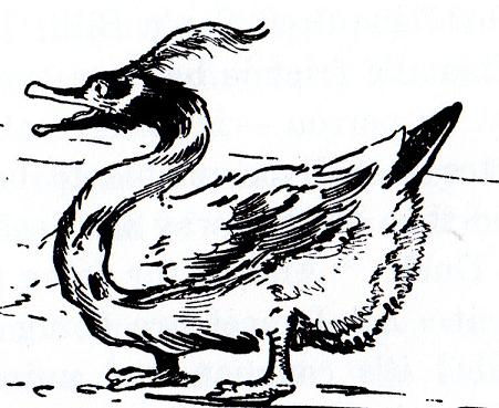 File:Lonesome-duck.jpg