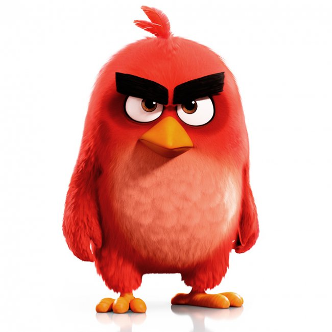 red bird the angry birds movie heroes wiki fandom powered by wikia. Black Bedroom Furniture Sets. Home Design Ideas