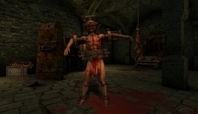 File:Tortured in Haunted Valley.png