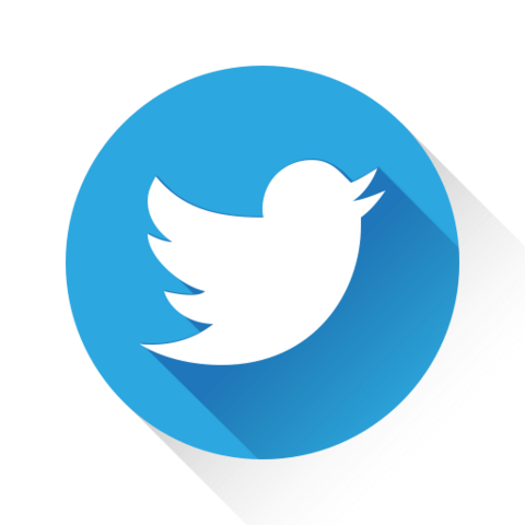 File:TwitIcon.png