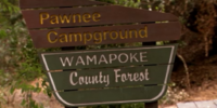 Wamapoke County Forest