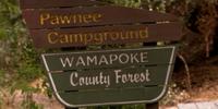 Wamapoke County Forest