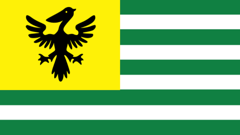 The Flag of the Szövetségi Köztársaság Endralon (Federal Republic of Endralon)