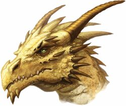 Gold dragon head