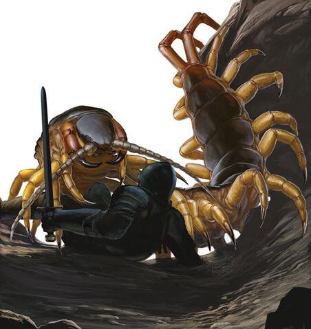 File:Centipede.jpg