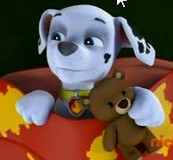 Marshall And His Lost Teddy Bear Paw Patrol Fanon Wiki