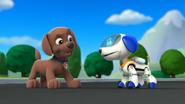 Zuma and Robo-Dog