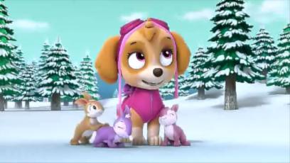 Pups save skye quotes paw patrol wiki fandom powered by wikia