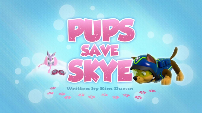 Pups Save Skye PAW Patrol Wiki FANDOM powered by Wikia