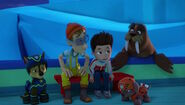 PAW Patrol - Wally the Walrus - Penguins 4