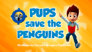 Pups Save the Penguins