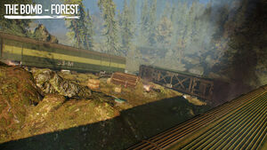 The Bomb: Forest