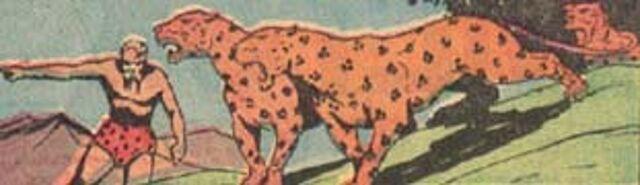 File:Leopard man111.jpg