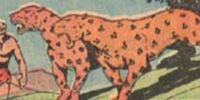Leopard Man (Fiction House)