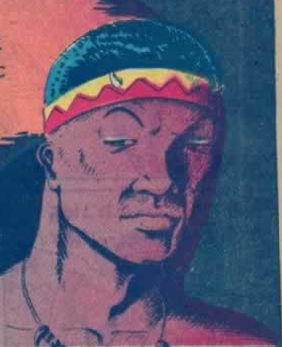 Image result for all negro comics lion man