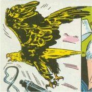 Eagleyankeeeagle