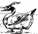 Lonesome Duck