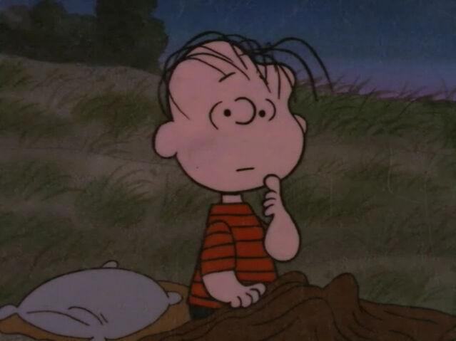 File:What Have We Learned, Charlie Brown (9).JPG
