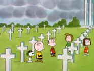 What Have We Learned, Charlie Brown (22)