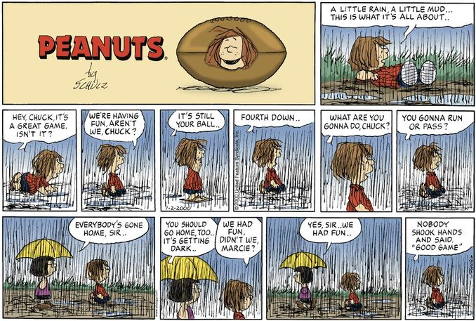 Peanuts daily comic strip