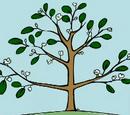 Peep's favourite tree